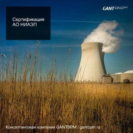 Сертификация АО «НИАЭП» фй управлению проектами Консалтинговая компания ГАНТБПМ