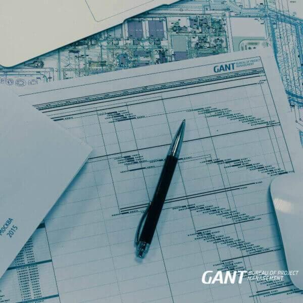 Планирование деятельности в проекте Консалтинговая компания GANTBPM