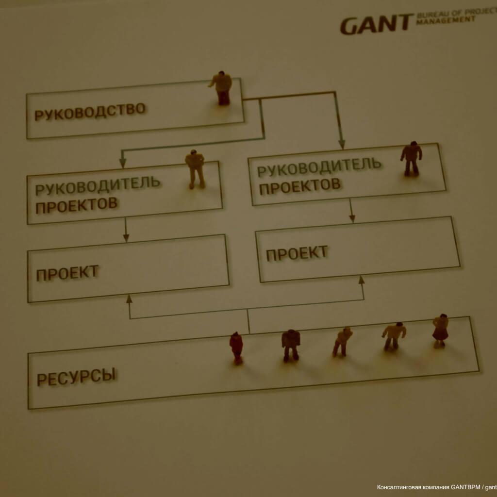 Проектно-ориентированная организационная структура